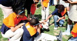 Ward 7 sixth graders visited campus Thursday with Georgetown's Kids2College program. REBECCA GOLDBERG FOR THE HOYA