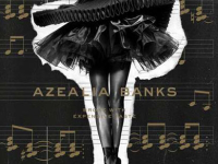 "PROSPECT PARK  After over two years of delays, Azealia Banks pleases fans with her new album ""Broke with Expensive Taste."""