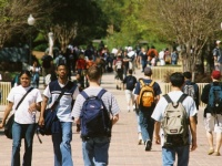 The Ways and Woes of The College Experience