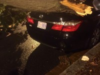 COURTESY OLIVIA ENOS A tree fell outside the front gates during heavy storms Monday evening, damaging the rear end of Olivio Enos' (GRD '17) car.