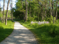 National Park Service | Washington, D.C.'s Department of Transportation plans to hold the first of two meetings on the proposed Palisades Trolley Trail on March 7.